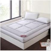 艾维 床品家纺床褥子 竹炭床垫子垫被榻榻米 加大双人 180*200cm